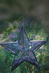 star feeder